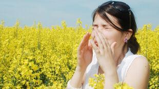 """Zwalczyć alergię... dietą? """"Przyczyna jest w jelitach"""""""