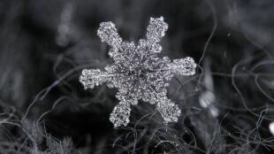 Minerał, który nie zawsze jest biały. Kilka zaskakujących faktów na temat śniegu