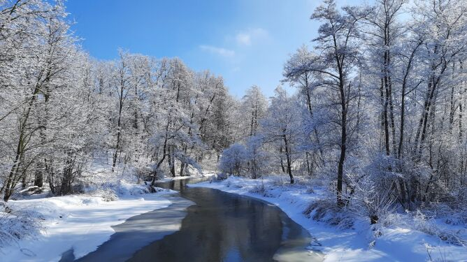 Ostatnie podrygi takiej zimy (Piotr Pyziołek)